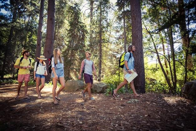 숲에서 함께 걷는 친구의 그룹