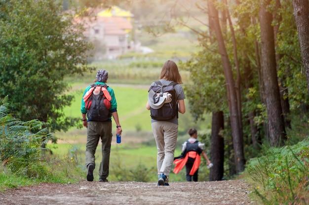 後ろから森のバックパックで歩いている友人のグループ。森の中をハイキングするバックパッカー。