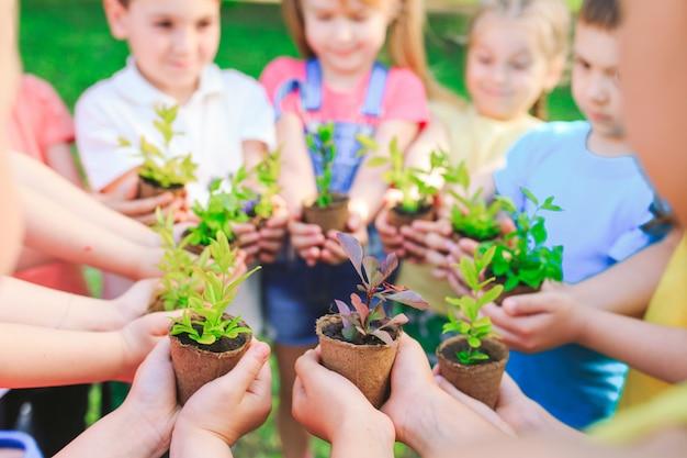 植木鉢に植物を保持している子供たちのグループ