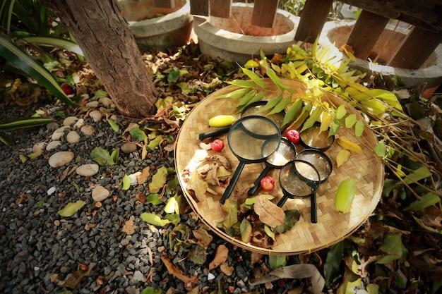 대나무 짠 바구니에 돋보기의 그룹입니다.