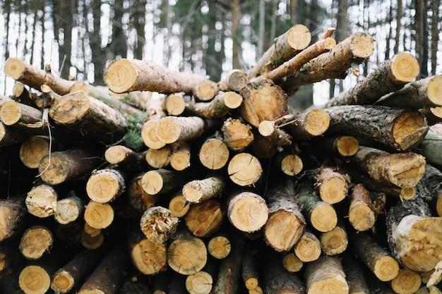 Группа натуральных деревянных бревен фон