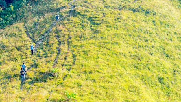 高い丘の山の緑の芝生でハイキングする人々のグループ