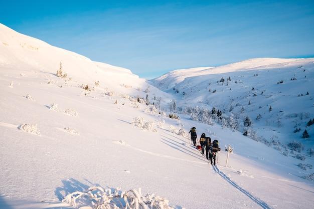 昼間は雪に覆われた山でスキーをする人々のグループ