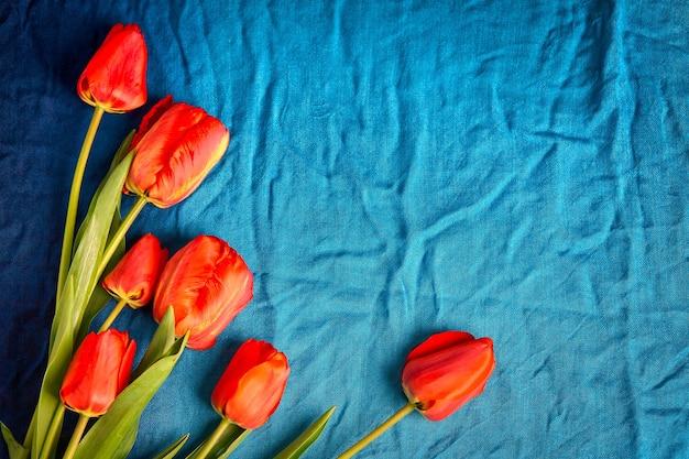 青い布の背景に赤いチューリップのグループ
