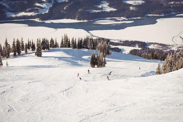 雪に覆われたアルプスでスキーをするスキーヤーのグループ