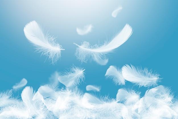 공중에 떨어지는 부드럽고 가벼운 흰색 깃털의 그룹