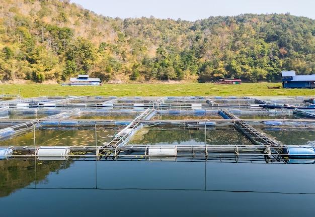 태국의 현지 농부인 시골 댐의 큰 저수지에 많은 민물고기와 함께 우리를 키우는 물고기 그룹, 복사 공간을 위한 전면 보기.