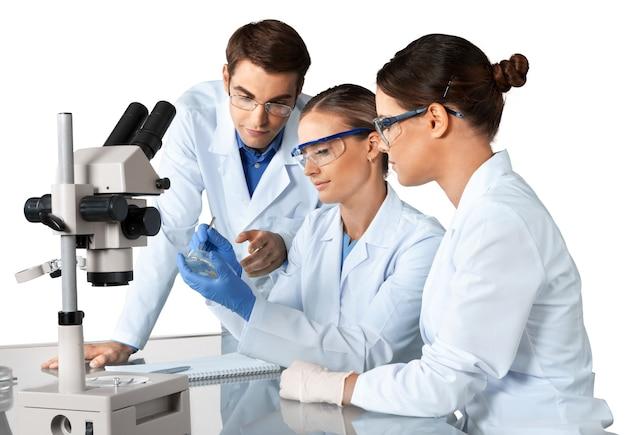 働いている科学者のグループ