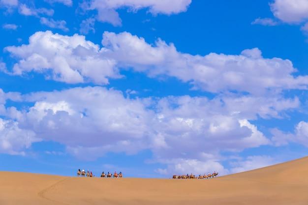 Группа туристов катается на верблюде по песчаной горе пустыни минша-шан или по поющим песчаным дюнам с караваном в рамках великого шелкового пути в дуньхуане, ганьсу, китай.