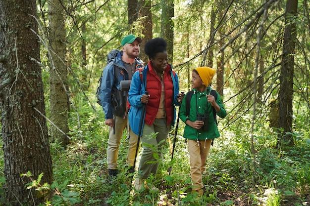 Группа туристов вместе отправляется в поход в лесу, они разговаривают друг с другом во время прогулки