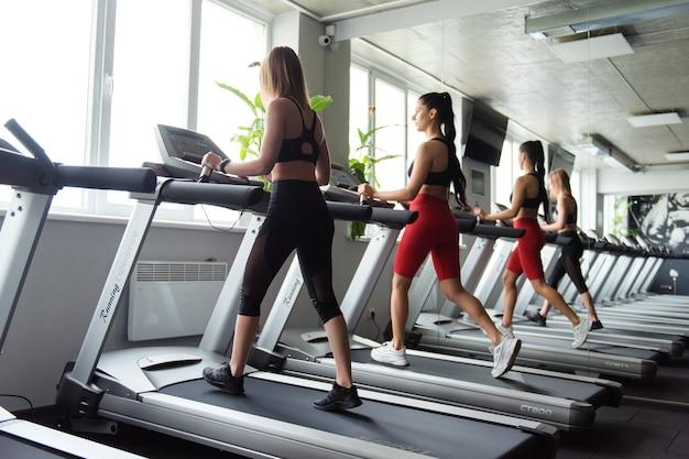 Группа двух стройных активных женщин в спортивной одежде, занимающихся кардио на беговой дорожке