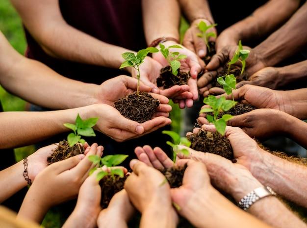 Группа добровольцев с росток для выращивания
