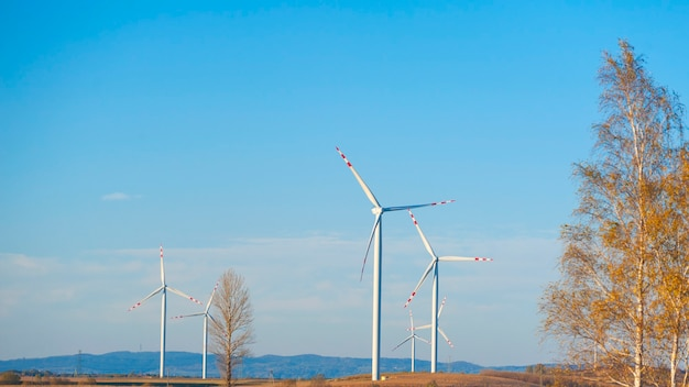 風力タービンのグループ。再生可能エネルギー。電気風車。
