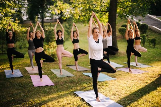 젊은 밀레니얼 여성 그룹이 일출 동안 공원에서 아침 나무 요가 포즈를 연습하고 있습니다. 운동복을 입은 사람들이 요가 나무 포즈를 취하고 있습니다. 소녀들은 새벽에 명상을 하고 있다