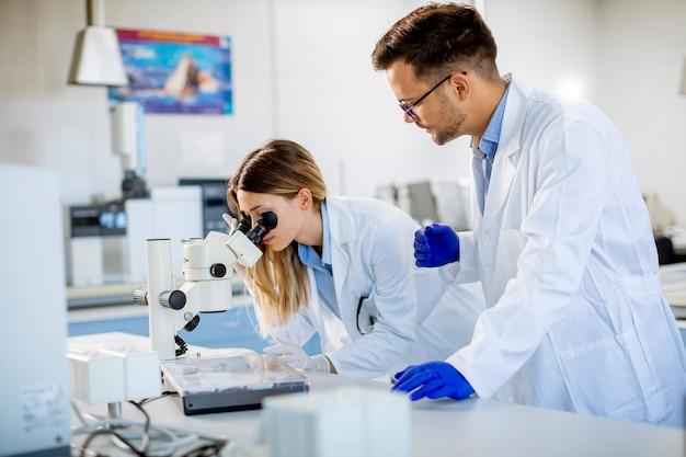 Группа молодых исследователей анализирует химические данные в лаборатории