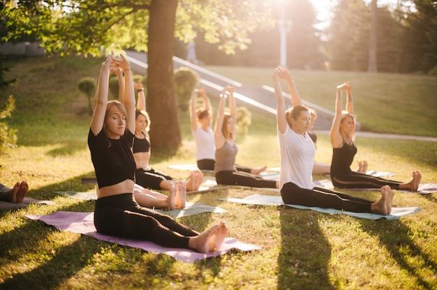 Группа молодых женщин занимается йогой и поднимает руки над головами утром в парке во время восхода солнца. группа людей сидит на траве на траве с закрытыми глазами