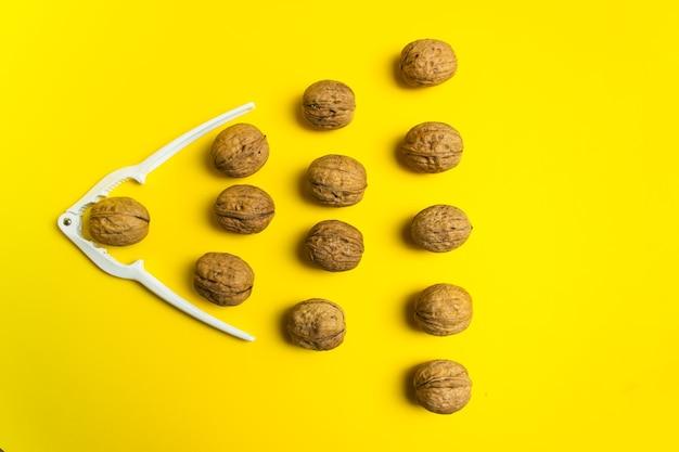 Group of ordinary walnut. leader, individuality, best worker, best employee, idea, team.