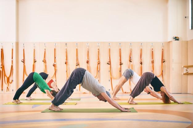 Group of people doing yoga downward facing dog pose on mats at studio