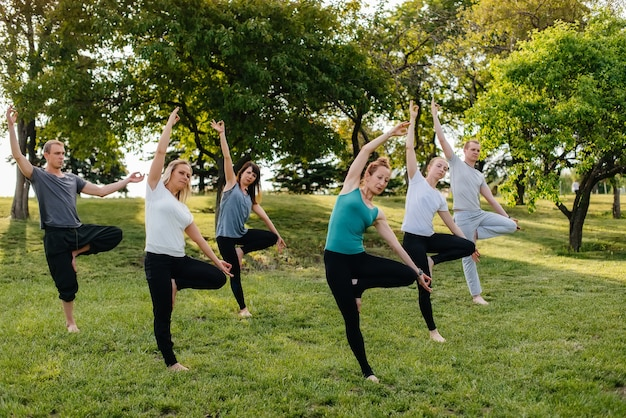 A group of people do yoga in the park at sunset. healthy lifestyle, meditation and wellness.