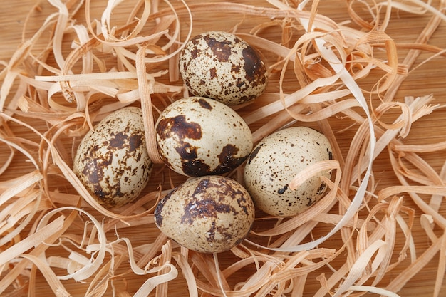 Group of raw organic quail eggs in nest