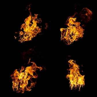 Group of real and hot flames are burning on a black background