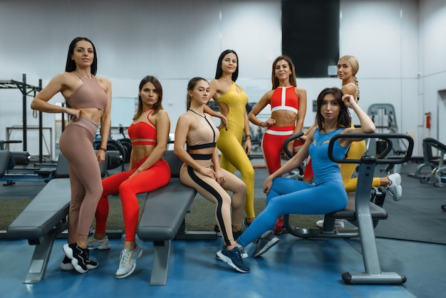 Group of sexy women poses at exercise machine in gym, front view. people on fitness workout in sport club, athletic girls in sportswear on training indoors