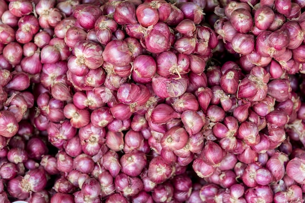 Group shallot red onion in market