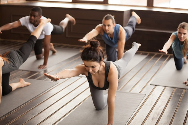Group of sporty people in bird dog exercise