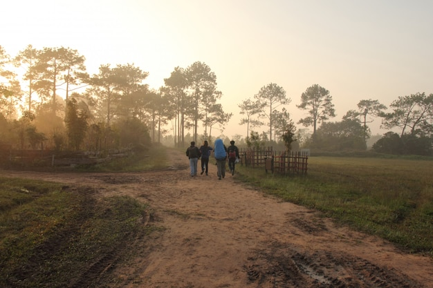 Group of tourist walking on hiking trail path in forest
