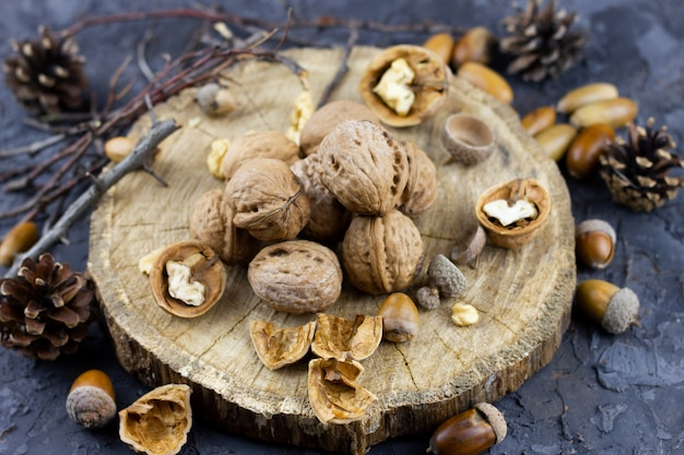 A group of walnuts on a dark background, a concept for the winter season. hazelnuts harvested in autumn