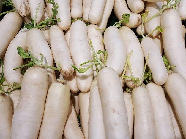 A group of white radish in the market or the supermarket
