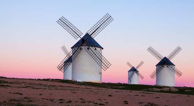 Group of  windmills at field in twilight