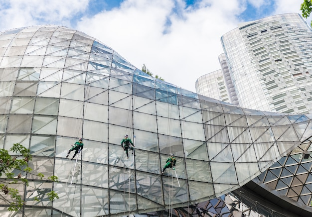 Group of workers cleaning windows service