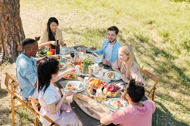 Group of young happy intercultural friends gathered by table served with homemade food for outdoor dinner under pine tree on sunny day