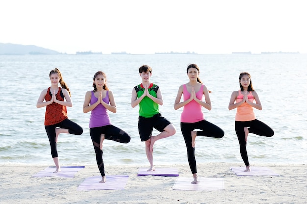 Group of young healthy people practicing yoga, tree pose asana