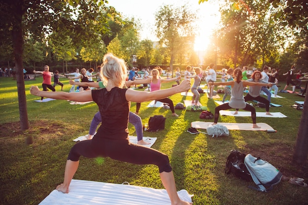 A group of young people do yoga in the park at sunset.