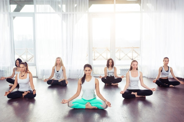 Group of young woman sitting and meditating in lotus pose, yoga concept