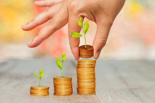Grow small plants with coins stacked in hand with bokeh background.