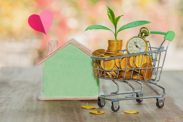 Grow small plants with coins stacked in trolley with bokeh background.