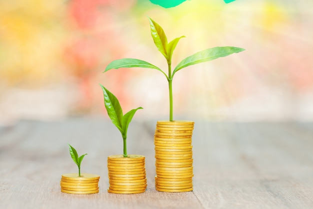 Grow small plants with coins stacked with bokeh background.