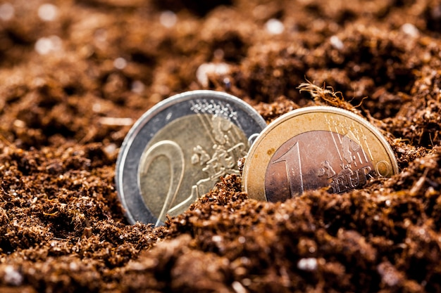 Growing euro coins. small depth of field.