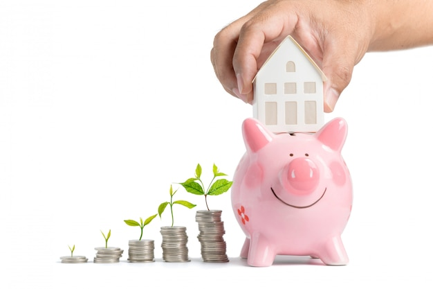 Growing money - hand man holding house model on piggy bank isolated