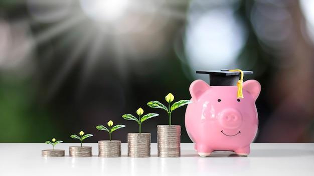 ぼやけた緑の自然の背景教育と金融の概念の貯金箱に置かれたコインパイルと大学院の帽子の成長する植物。