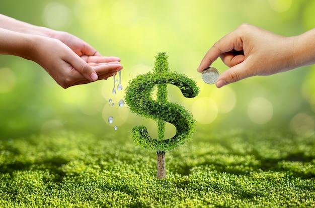 成長事業。木は形に成長し、金融ビジネスの成長の概念を示します。