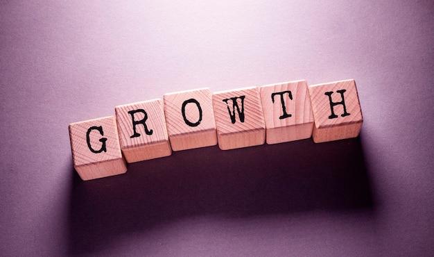 나무 큐브에 쓰여진 성장 단어
