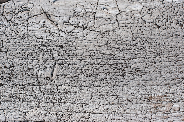 Grunge abstract background with cracked old white paint on wooden surface