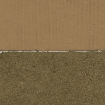 Grunge background with torn paper texture on cardboard