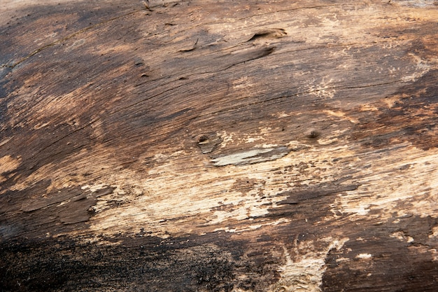 Grunge brown wooden textured background