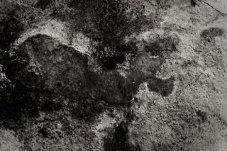 Grunge mud texture