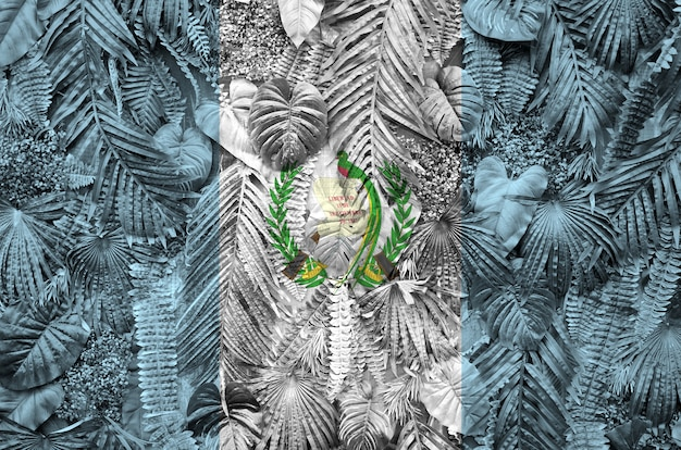 Guatemala flag depicted on many leafs of monstera palm trees. trendy fabric